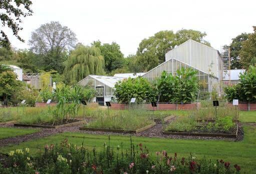 Botanische Tuin Delft : Met de nationale kunst & cultuur cadeaukaart genieten bij botanische