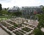 Nationale Kunst & Cultuur Cadeaukaart Leiden Hortus Botanicus Leiden