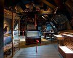 Nationale Kunst & Cultuur Cadeaukaart Leeuwarden Natuurmuseum Fryslân