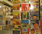 Nationale Kunst & Cultuur Cadeaukaart Groningen Nederlands Stripmuseum